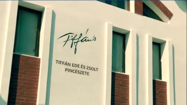 ifj. Tiffán Zsolt és RedY (videó)